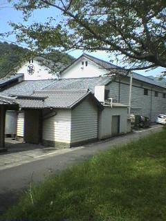shida4.jpg